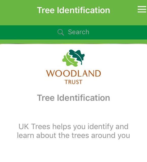 Review: Woodland Trust British Tree Identification App
