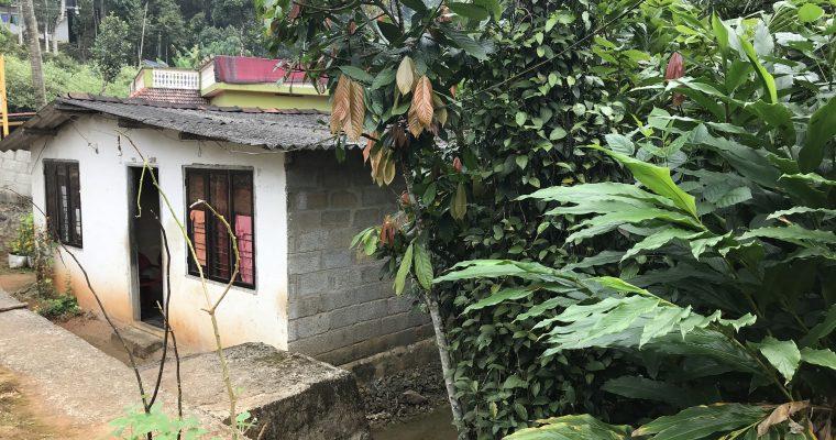Kerala: Forest Garden, Home Garden, Fantasy Garden